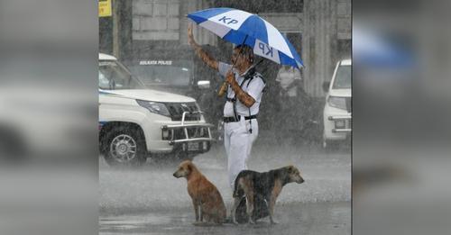 Polizist in Indien, der seinen Regenschirm mit streunenden Hunden teilt, wird Internet-Bekanntheit