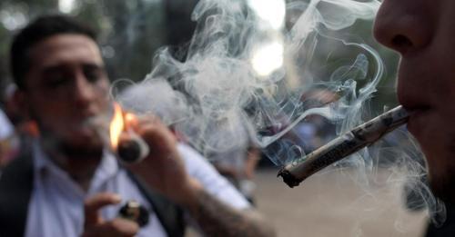Ampel steht auf grün: Die neue Regierung muss Cannabis endlich freigeben